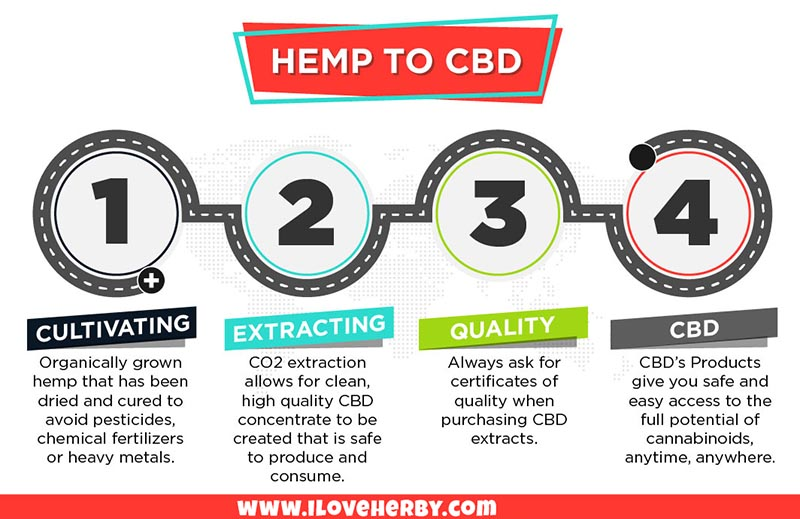 What Are CBDs